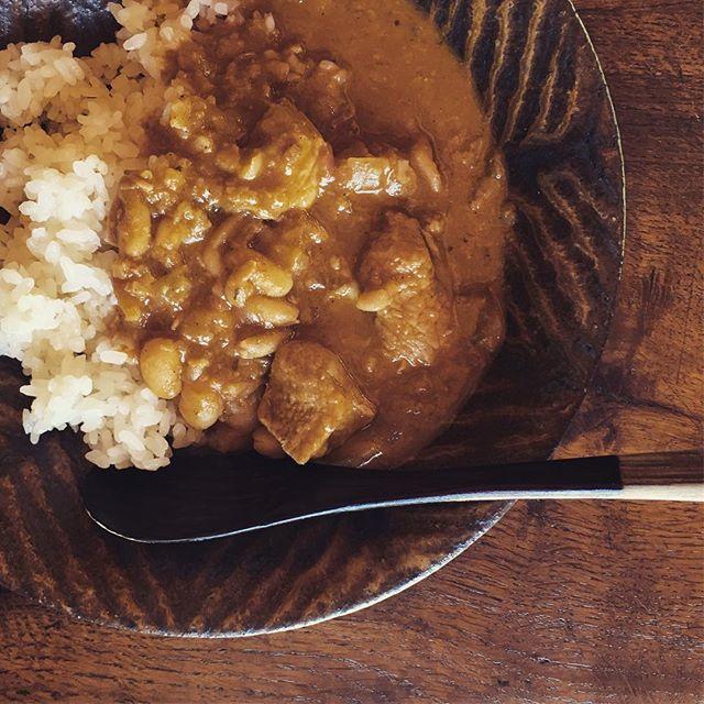 二日目のカレー(大人用)。 カレーの壺スパイシーとココナッツミルクで簡単に。すぐにカレーに豆入れたがります。
