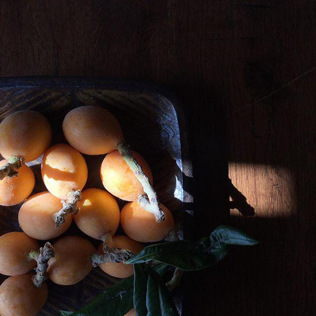 友人が収穫してきてくれた枇杷。ありがたいなー。