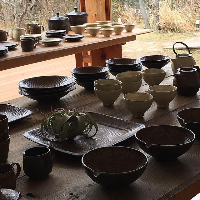 明日より。奈良のFIELD NOTEさんでの展示が始まります。3/25まで。明日はお店でお待ちしております。@fieldnote_ @jojosusumu