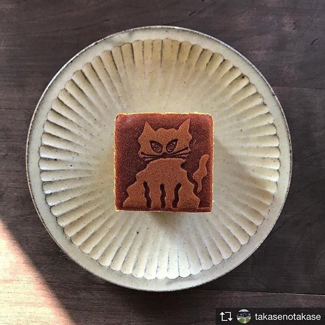 DE CARNERO CASTEのカステラが本日限定でお召し上がりいただけます!.Repost from @takasenotakase @TopRankRepost #TopRankRepost .器と食と猫の関係性それらが人の精神にどのような影響を与えているか考える朝。カステラ お先にいただきます。.城 進 「旅の記憶」.2018.3.24.sat-4.1.sun openday 11:00-18:004.2.man-4.5.thu appointment 11:00-18:004.6.fry close4.7.sat-4.8.sun openday 11:00-18:00.oneday cafe at 離れ.cafeshima×DE CARNERO CASTE4/1 open 11:00-18:00#城進