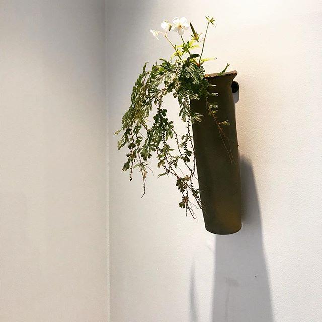 焼〆の花器たくさん作りました。その辺にあるお花をぜひ生けてほしいな〜。.本日は京都やまほんさんにてお待ちしております。.城進 陶磁器展10月5日(金)-10月24日(水)京都やまほん にて定休日 木曜日@kyoto_yamahon @jojosusumu