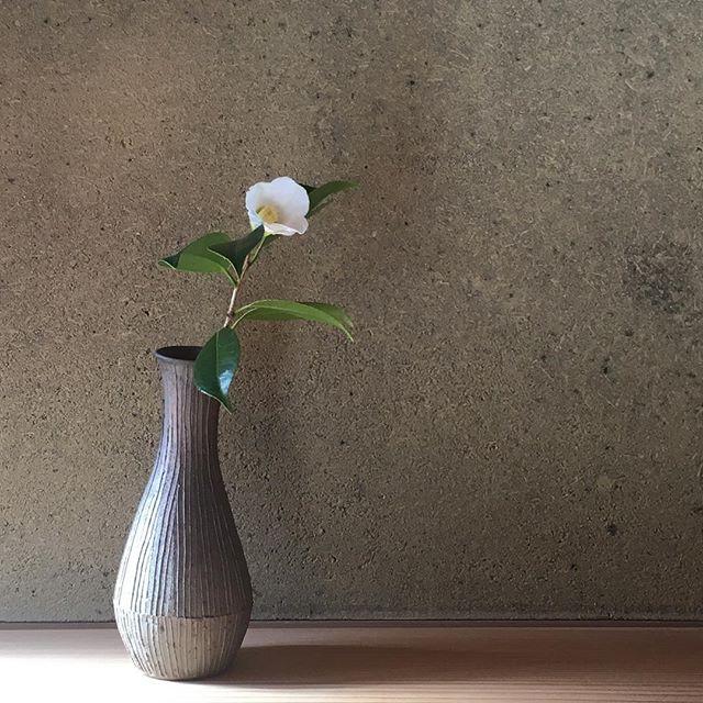 白藪椿を焼〆花入に。.横浜 手音さんの「冬winter 展」に参加しています。耐熱の器を中心にごらんいただけます。12月5日まで。@teon.utsuwa @jojosusumu
